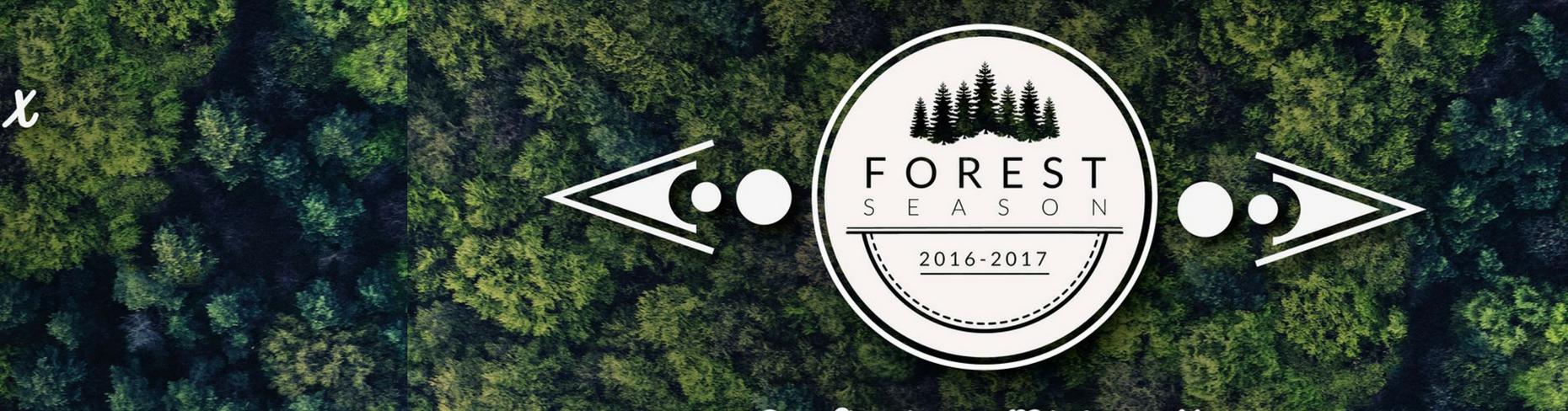 Wystawa FOREST SEASON